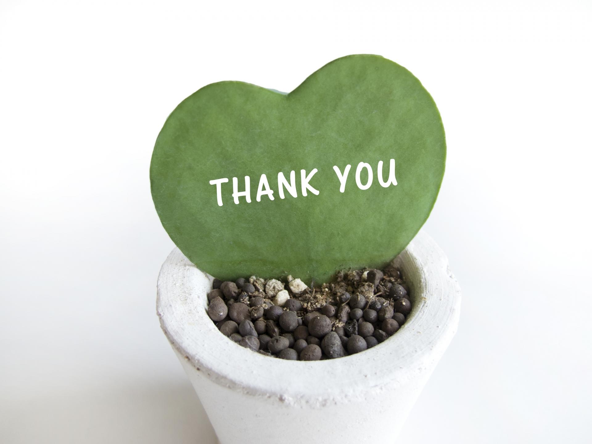 2018春休み教室無料体験会ご参加ありがとうございました